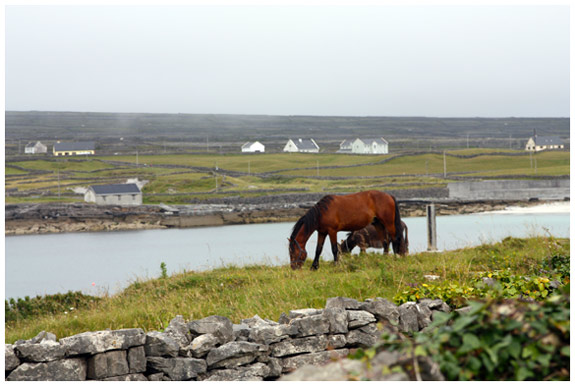 Inishmore - View from the Man of Aran Cottage
